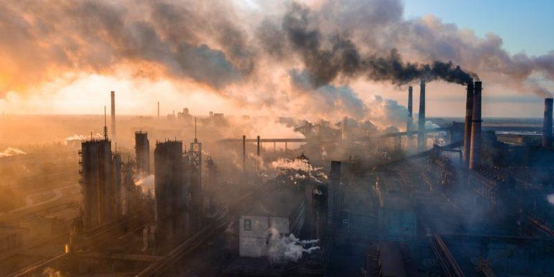 capitalismo criticas ecologia contaminacion