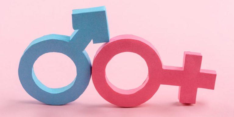 genero femenino masculino