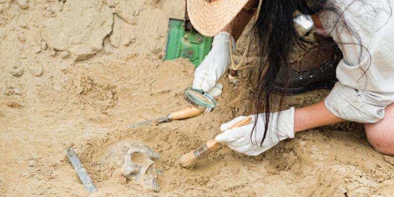Arqueología - Ciencias Sociales