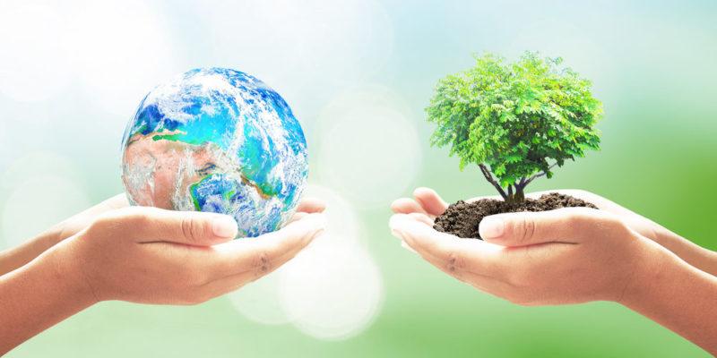 Ecolog a concepto ramas y protecci n del medio ambiente for Medio en el que habitan los arboles