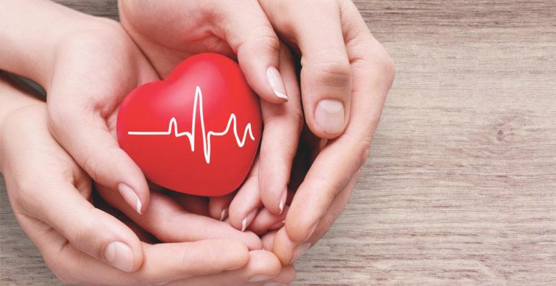 Salud - Concepto, componentes y salud ocupacional
