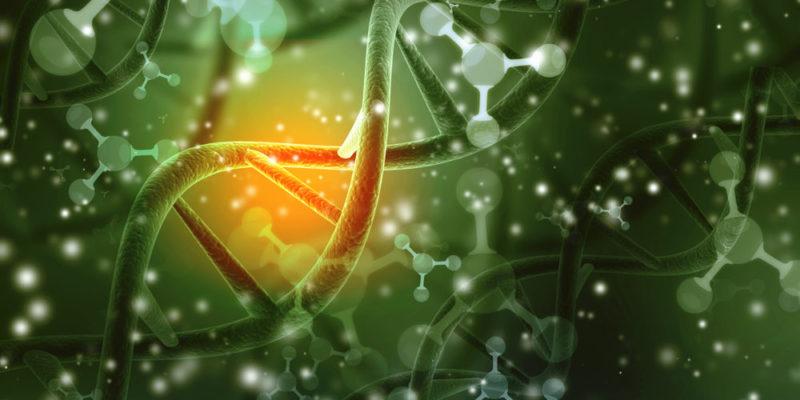 Bioquímica - Química