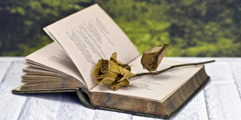 Poema y poseía