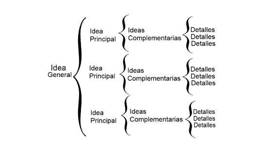Jerarquización de ideas.