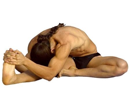 Flexibilidad