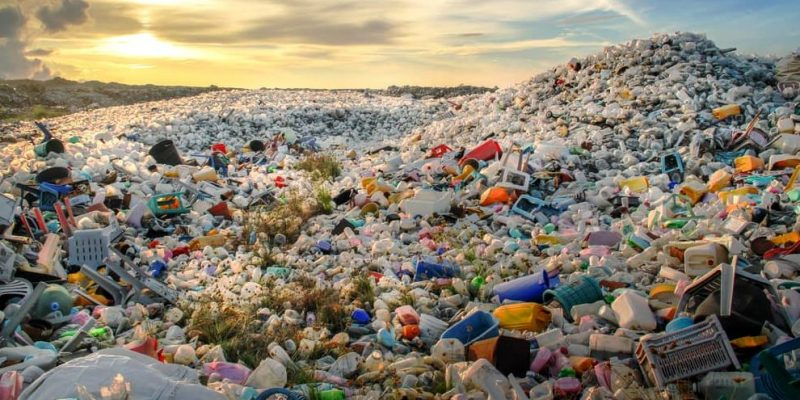 impacto ambiental causas