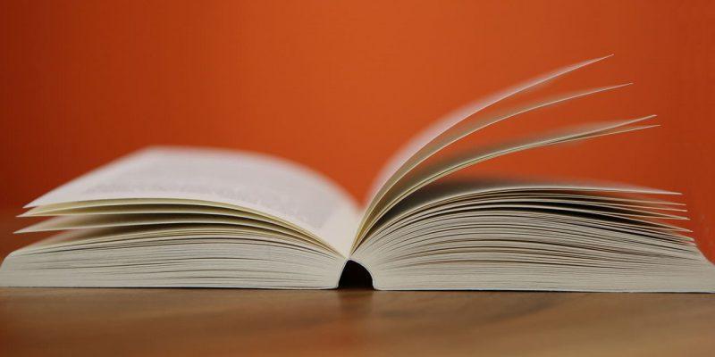 La literatura