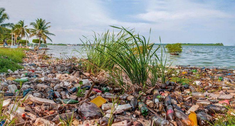 Qu es contaminaci n del suelo concepto definici n y caracter sticas - Fuentes de contaminacion de los alimentos ...