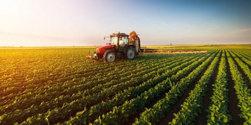 agrario- vida de campo