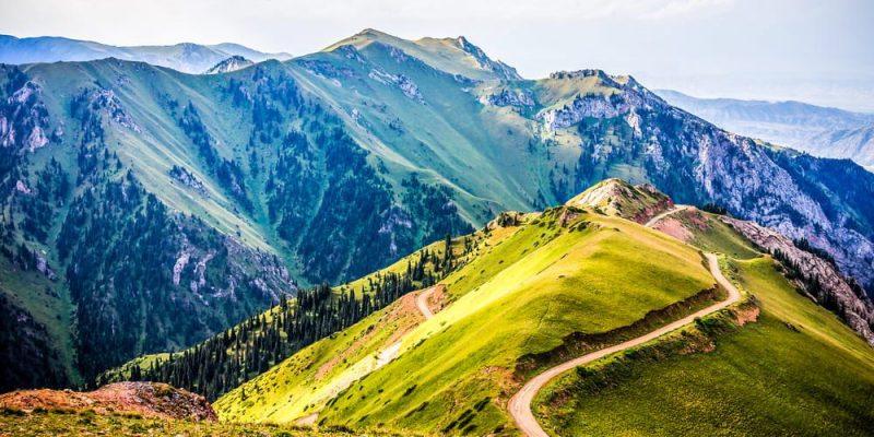 Montaña-vegetación