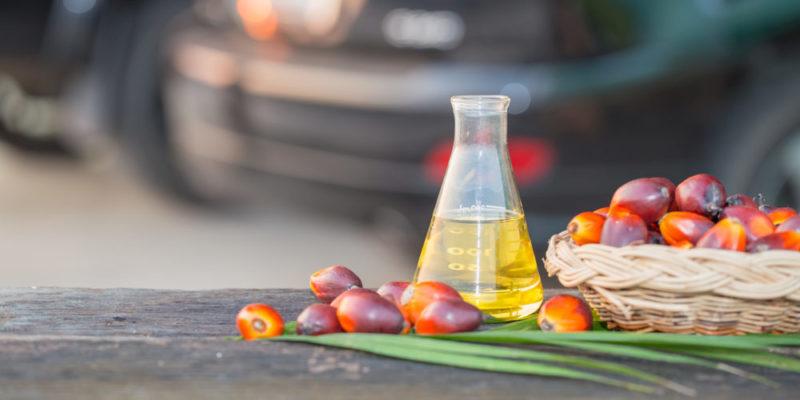 Biocombustibles - Biodiesel