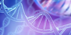 Bioética - ADN