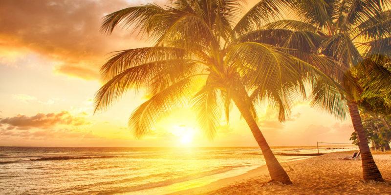 Luz Solar: Concepto, Composición, Beneficios y Riesgos