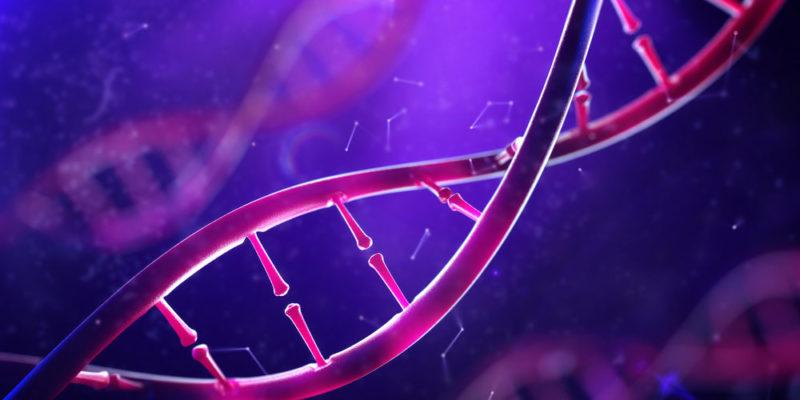 ADN - biomolécula