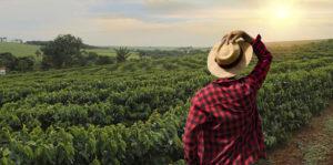 Población Rural