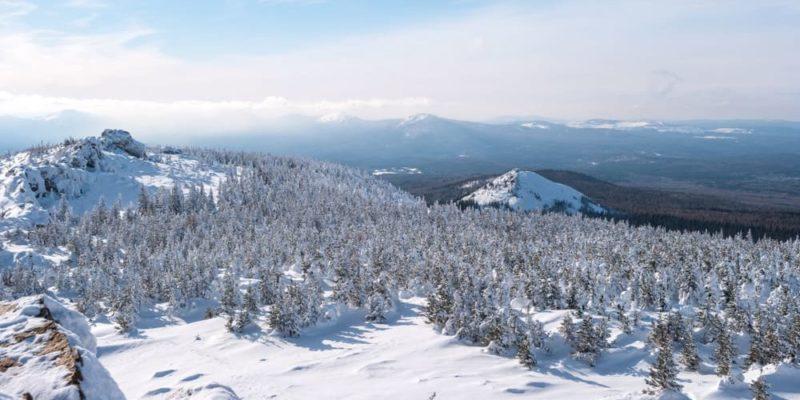 taiga bioma bosque ejemplo montes urales rusia