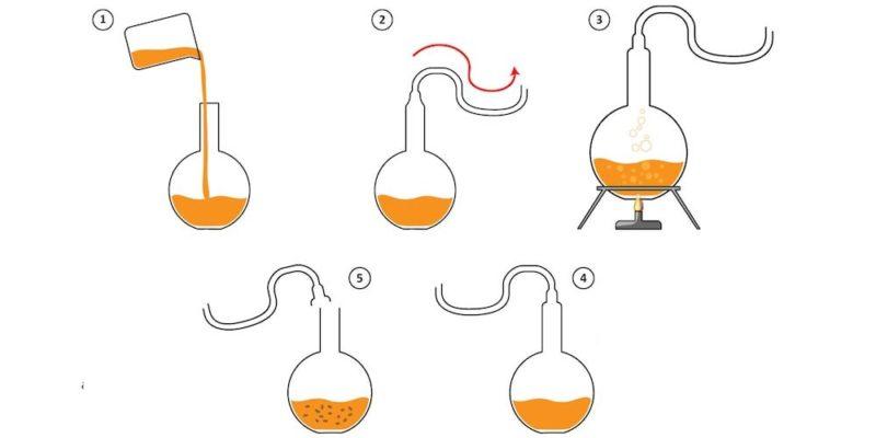 teoria generacion espontanea experimento pasteur ciencia