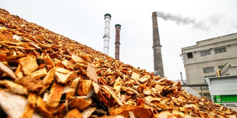 biomasa energia renovable