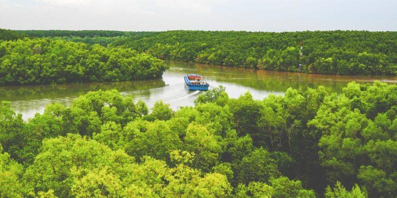bosque tropical caracteristicas vietnam