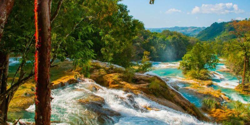 bosque tropical chiapas mexico agua azul
