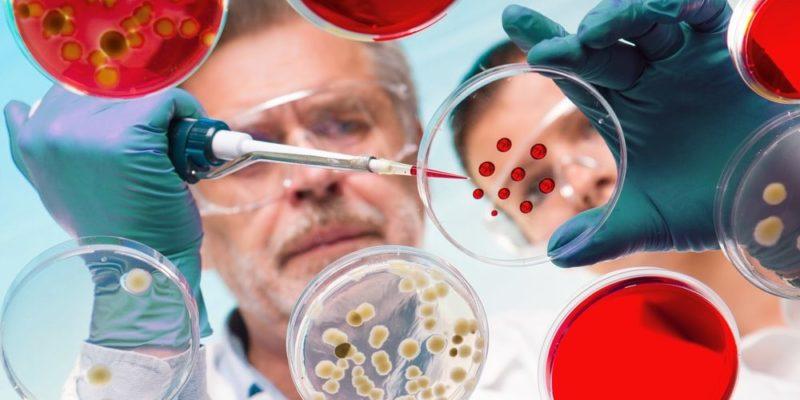 vidrio de reloj quimica laboratorio capsula de petri