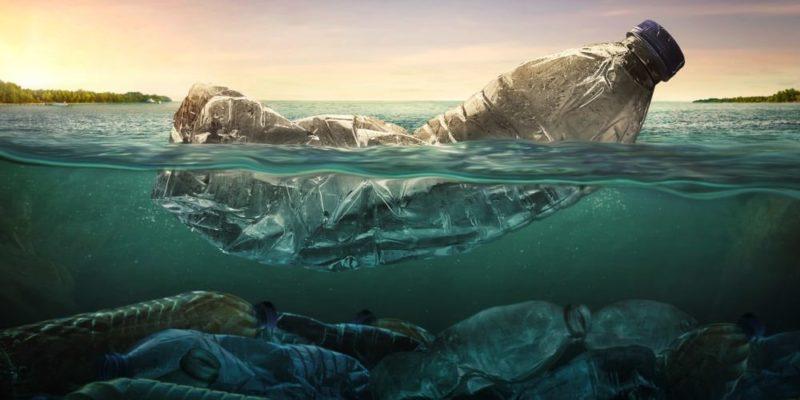 cuidado del agua ecologia contaminacion