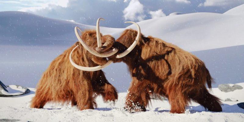 evolucion biologica animales extintos