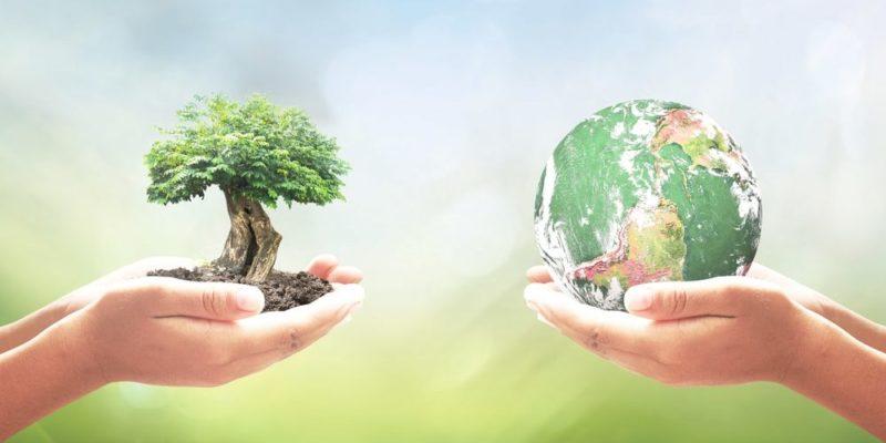 geografia importancia ecologia