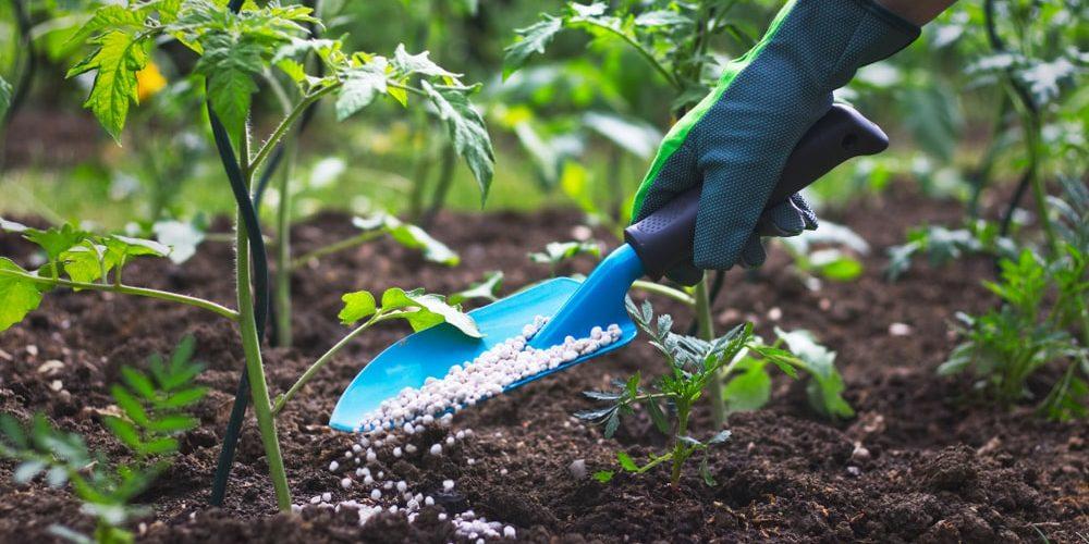 pesticida plaguicida fertilizante