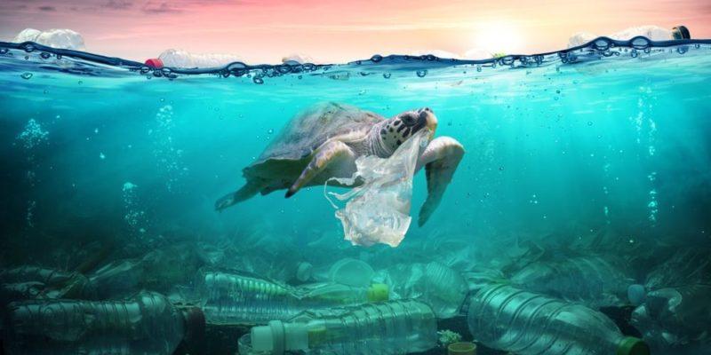 problemas ambientales contaminacion agua