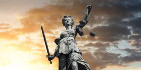 Ramas del derecho