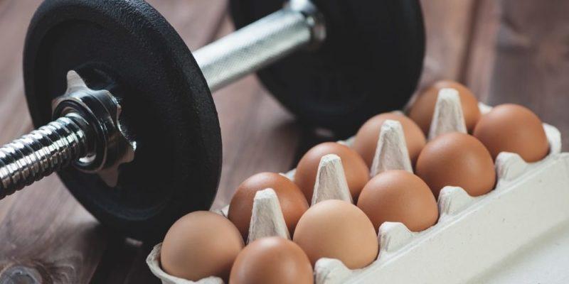 catabolismo muscular ejercicio