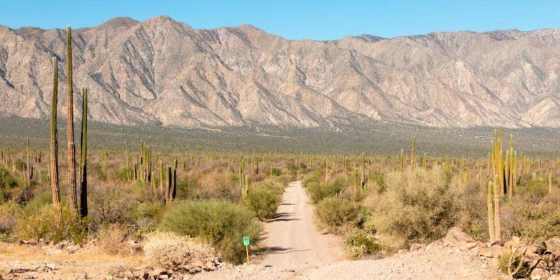 clima de mexico desierto baja california