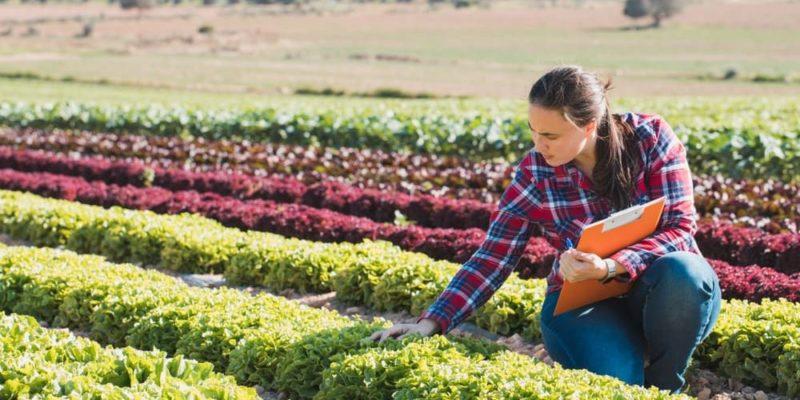 desarrollo sustentable agricultura