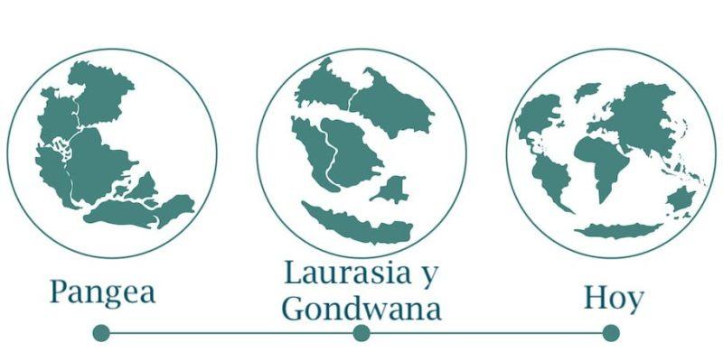 pangea deriva continental teoria laurasia gondwana