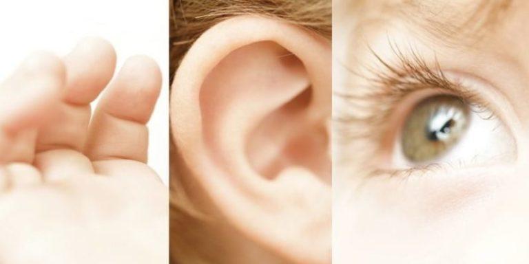 aprendizaje auditivo visual kinestesico