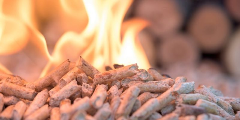 recursos energeticos biomasa