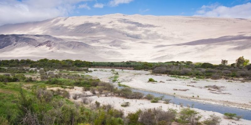 valle acari arequipa peru desierto