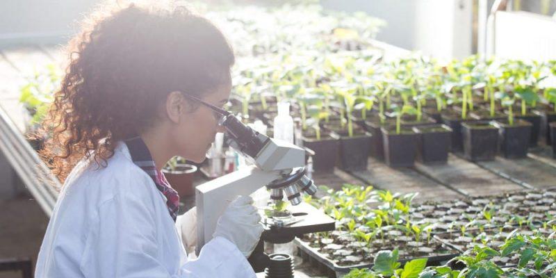 agronomia ciencias auxiliares microbiologia