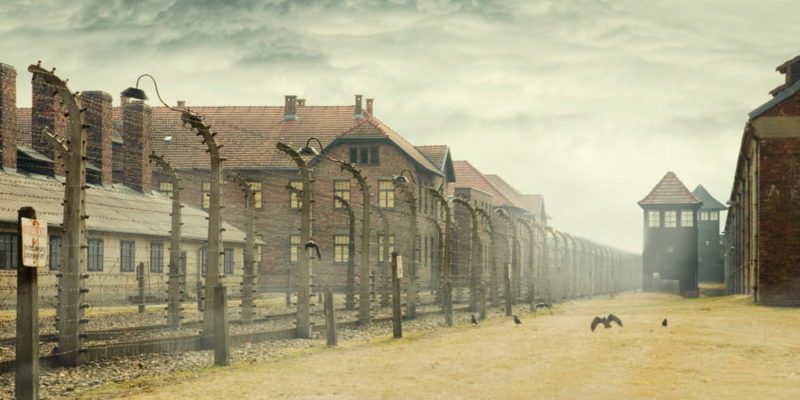 creencia holocausto negacionismo