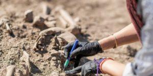 tipos de investigacion arqueologia