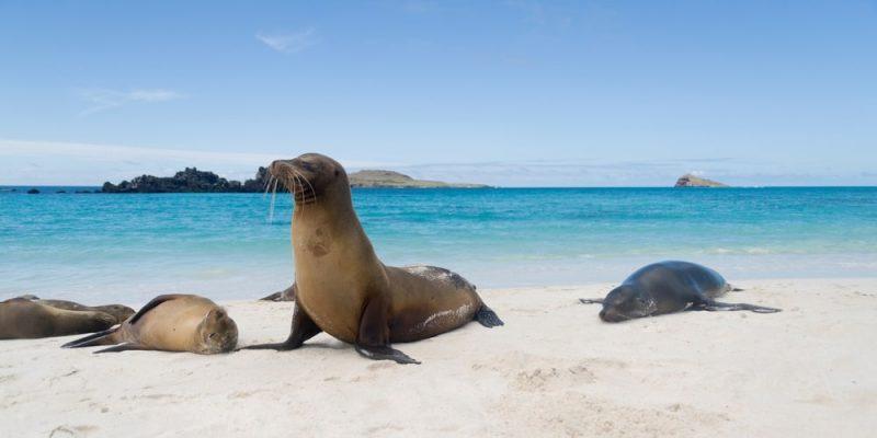 archipielago galapagos ecuador