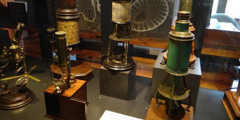 historia del microscopio