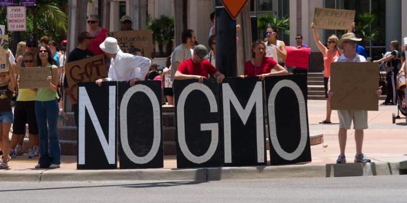 manipulacion genetica aspectos eticos