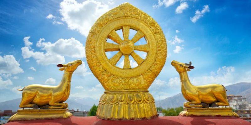 budismo simbolo rueda del darma dharma chakra
