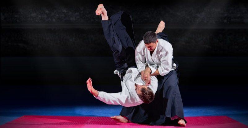 yin yang aplicaciones artes marciales