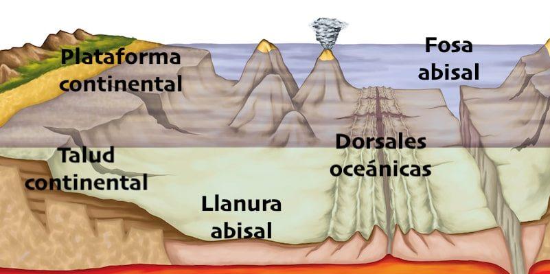 relieve oceanico formas
