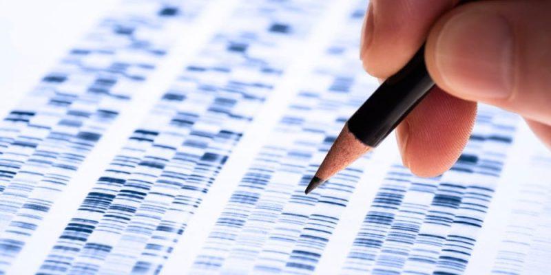 ramas de la biologia genetica