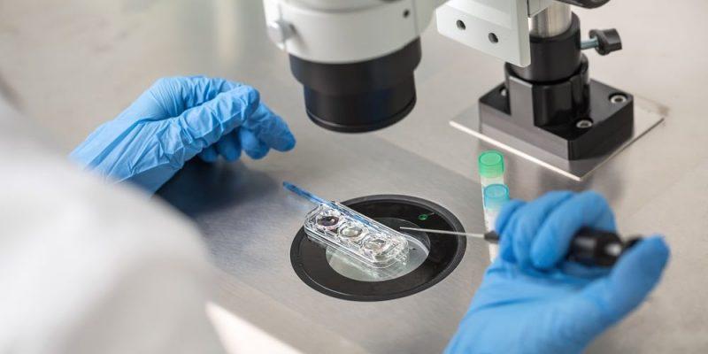 ramas de la biologia microbiologia