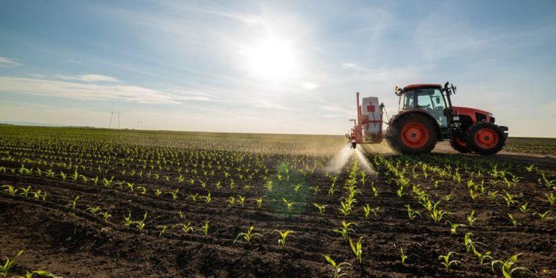 Elementos naturales y sociales ejemplos agricultura